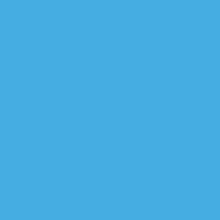 BitWallet Globe Symbol